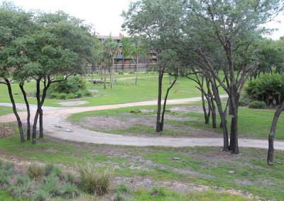 AKL savannah room view