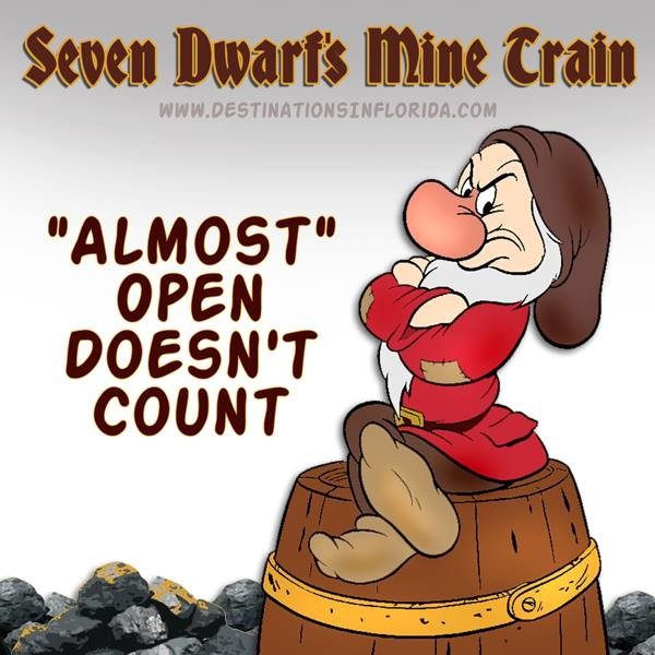 Seven Dwarfs Mine Train ©Destinations in Florida