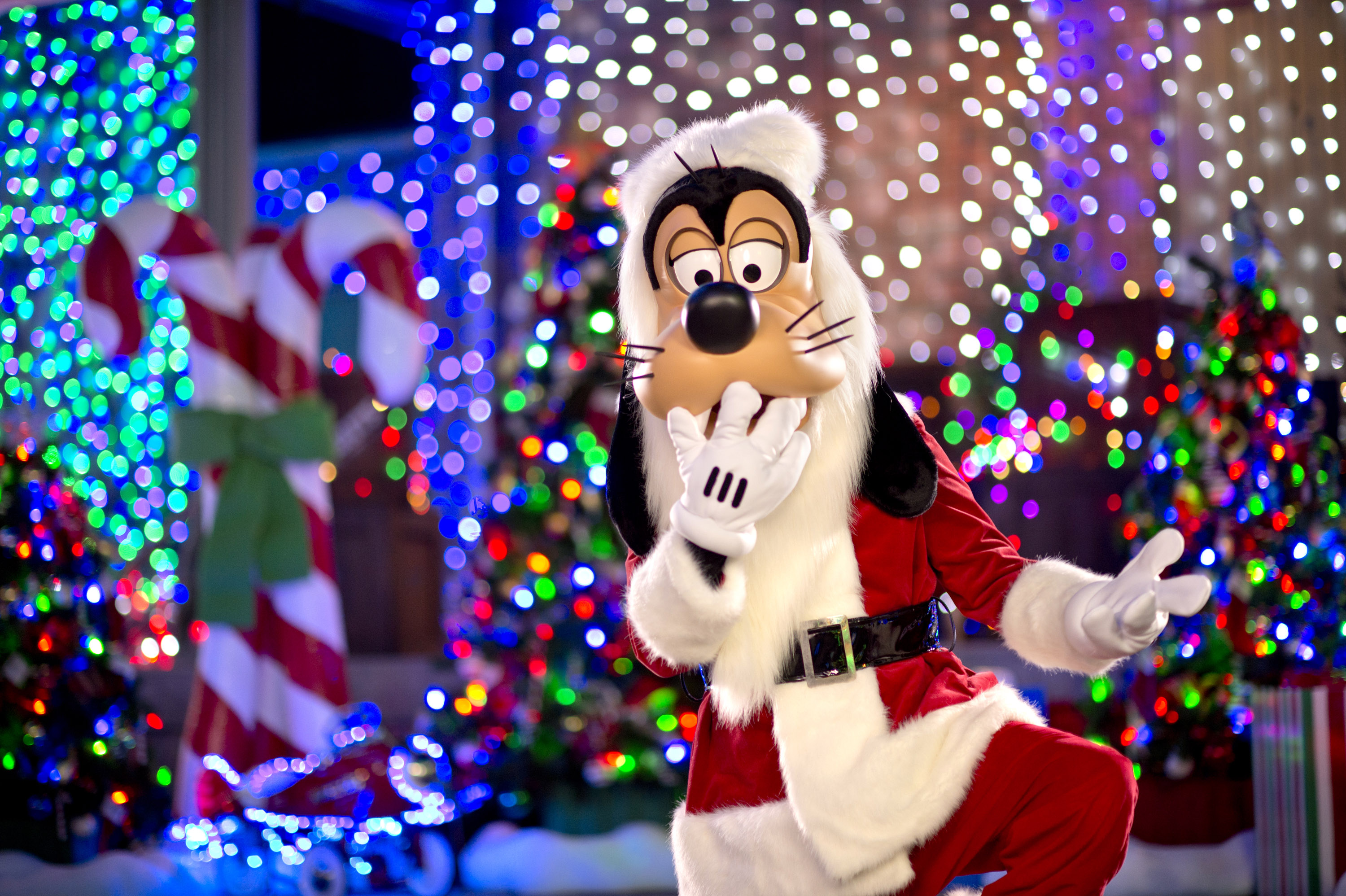 55e89c58da7c9 Santa Goofy joins the fun during The Osborne Family Spectacle of Dancing  Lights at Disney s Hollywood Studios. Making nightly appearances on the  Streets of ...