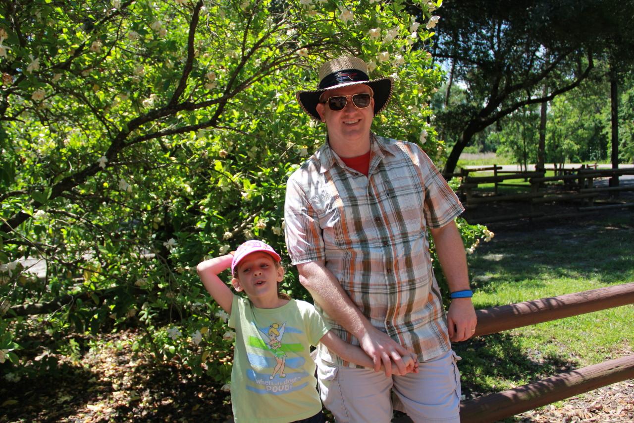 Cargo Shorts: Dad's Vacation Tool Belt