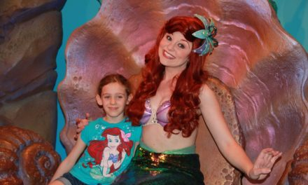 Disney World Ultimate Princess Meet and Greet Guide