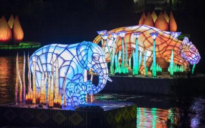 Rivers of Light Finally Sets Sail at Disney's Animal Kingdom